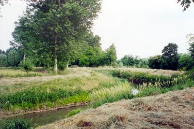 """Il fiume Marzenego, nel tratto fra Noale e Robegano, col suo caratteristico corso """"a serpentina""""."""